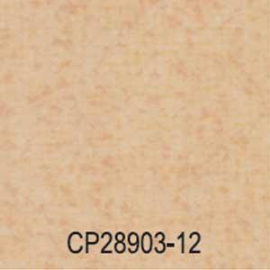 CP28903-12