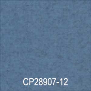 CP28907-12