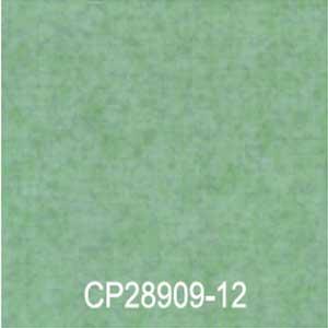 CP28909-12