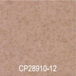 CP28910-12