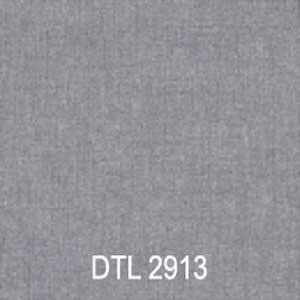 DTL2913