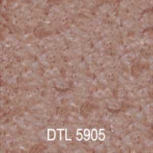 DTL5905