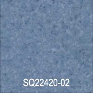 SQ22420-02